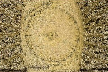 An eye inside the eye... © Crop Circle Connector.