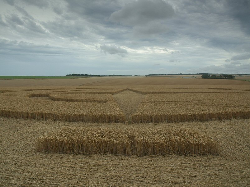 Inside the crop circle, © Randell.